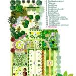 ogrody pokazowe &motylarnia -plansza
