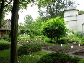 Ogród roślin zdatnych do zażycia lekarskiego
