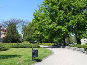 Park im. Adama Mickiewicza w Poznaniu
