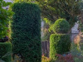 Arboretum i ogród pokazowy Daglezja w Rykach