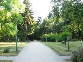 Arboretum w Bydgoszczy