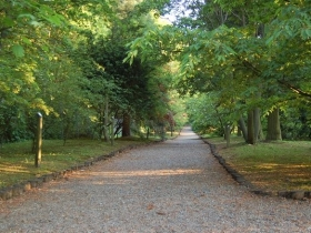 Arboretum w Glinnej
