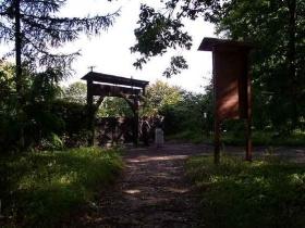 Arboretum w Laskach
