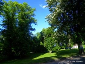 Arboretum w Nietowie