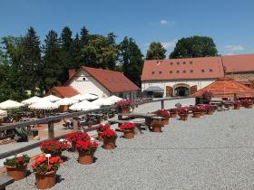 Arboretum Wojsławice - folwark z gastronomią_ 2015_HGN