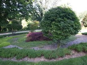 Arboretum w Wojsławicach