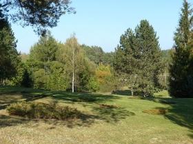 Arboretum w Zielonce