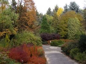 Ogród botaniczny UMCS w Lublinie