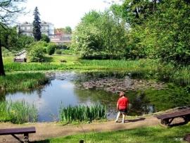 ogrod botaniczny krakow