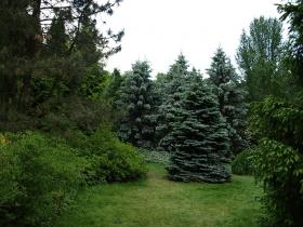 Ogród Botaniczny w Powsinie