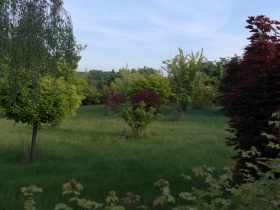 Ogrod Brzoskwinia