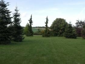ogrod brzoskwinia (5).jpg