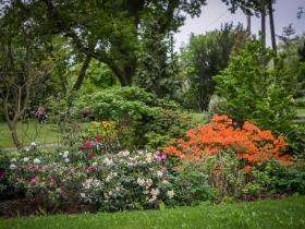 Ogród przy domu pomocy społecznej w Gołuszycach