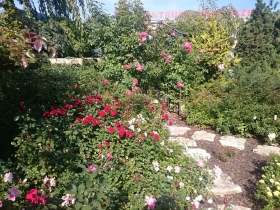 Ogród Śląski
