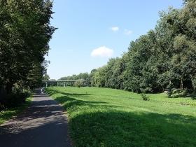 Park Adama Wodziczki w Poznaniu