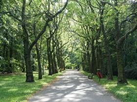 Park Górczyński w Poznaniu