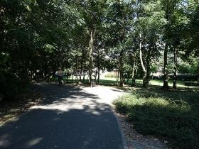 Park im. ks. Józefa Jasińskiego w Poznaniu