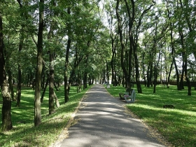 Park Lasek Dębiec w Poznaniu