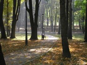 park-miejski-w-kazimierzy-wielkiej-273597