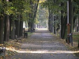 park-miejski-w-kazimierzy-wielkiej-273598