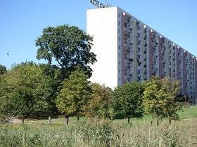 Park na osiedlu Tysiąclecia w Poznaniu
