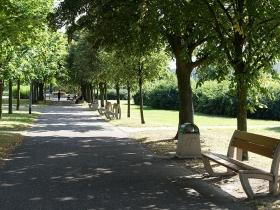Park na osiedlu Wichrowe Wzgórze w Poznaniu