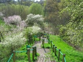 Park Piszczele w Sandomierzu
