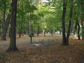 Park Solvay w Krakowie
