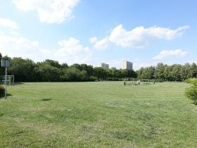 Park Władysława Czarneckiego w Poznaniu