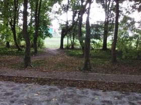 Zabytkowy Park w Warnicach